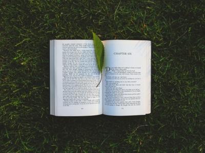 Fils de lectura I: El llenguatge de la salut mental